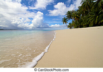 onda, quebrar, ligado, areia praia, ilha tropical