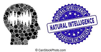 ondas cérebro, colagem, ícone, natural, inteligência,...