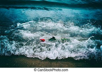ondas, el lavarse lejos, un, rosa roja, de, el, playa., vintage., amor