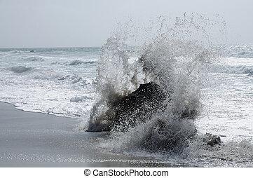 ondas grandes, ligado, a, costa ocidental, de, fuerteventura, ilhas canário, espanha