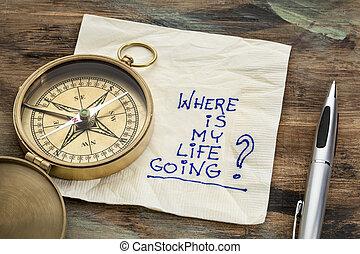 onde, é, meu, vida, ir