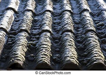 ondeggiato, amianto, grigio, tetto