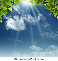 onder, de, blauwe , skies., abstract, natuurlijke ,...