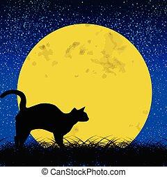 onder, kat, volle, black , maan