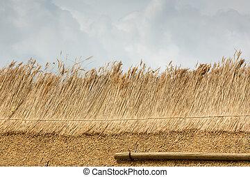 onderdeel van, thatched dak, met, stro