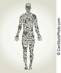 onderdelen, lichaam, de, persoon