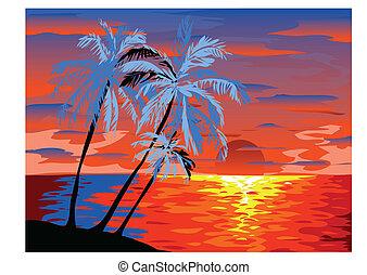 ondergaande zon , aanzicht, in, strand, met, palmboom
