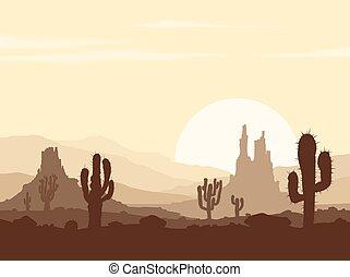 ondergaande zon , in, steen, woestijn, met, cactussen