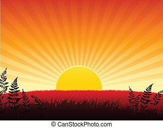 ondergaande zon , internet, achtergrond