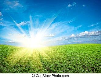 ondergaande zon , op, akker, van, groene, fris, gras, onder, blauwe hemel