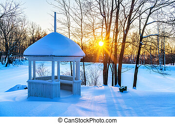 ondergaande zon , park, winter, kleurrijke