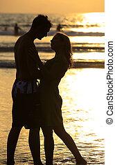 ondergaande zon , silhouette