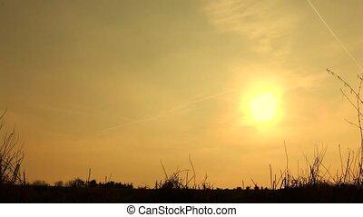 ondergaande zon , silhouetted, gezin, wandeling