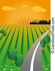 ondergaande zon , vector, groene, valley.