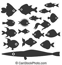onderwater, aquatisch, silhouette, natuur, aanhalen, vis...