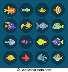 onderwater, aquatische dieren, natuur, aanhalen, vis kom,...