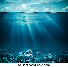 onderwater, coraal, hemel, oppervlakte, water, zeebedding, ...