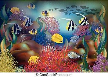 onderwater, visje, illustratie, tropische , vector,...