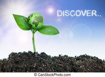 onderzoek, concept, ontdekken