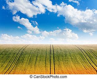 ondulado, campo, com, céu nublado, e, horizonte