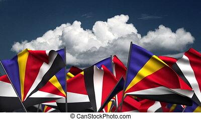 onduler, drapeaux, seychelles