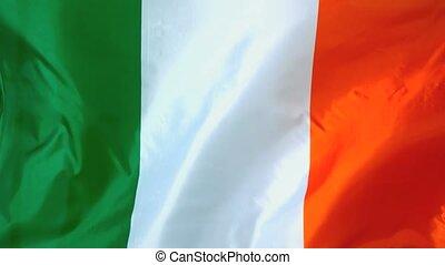 onduler, irlandais, vent, drapeau