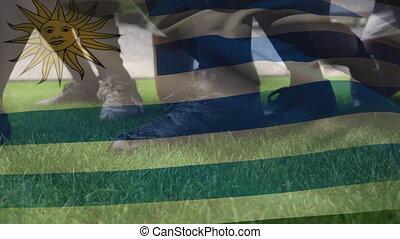 onduler, multi-ethnique, drapeau, sur, équipes, jouer, deux, animation, rugby, uruguayen