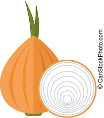 One and a half piece of fresh onion vector illustration