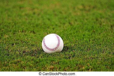 baseball on grass in baseball field