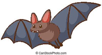 One bat flying on white background