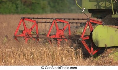 One big combine harvester, close up. Dry golden wheat field.
