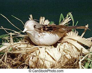 One bird in nest