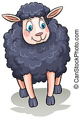 One black sheep on a white background
