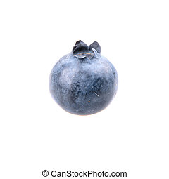One blueberry on white background