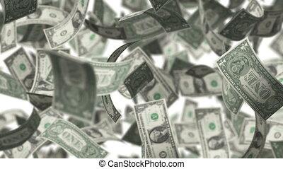 One Bucks - Rotation on white background