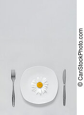 One chamomile flower on plate, cutlery fork and knife on grey background Concept vegetarian healthy eating diet or anorexia. Trendy colors 2021