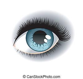 One eye with the eyelashes