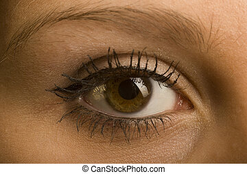 one female open brown eye with make-up