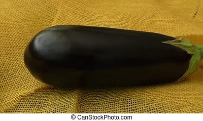 One fresh eggplant over yellow background