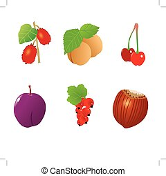 One fresh plum on the white background,couple of cherry on the w