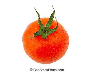 One fresh red tomato isolated on white background.