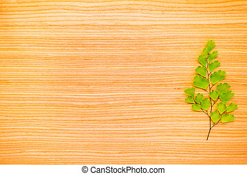 one green branch and chamomile on oak texture