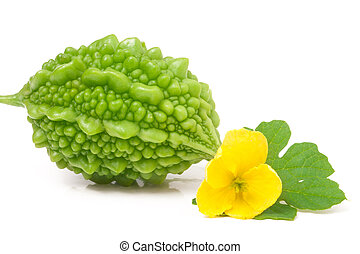 one green momordica or karela isolated on white background -...