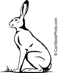 One Hare Black and White