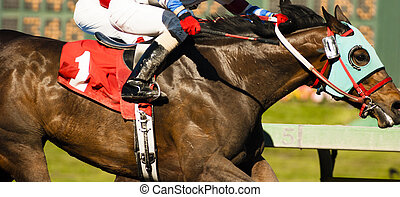 Two Horses and Jockeys Come Aross Finsih Line Neck and Neck Number One