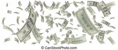 one hundred dollars rain - isolated One hundred dollar rain...