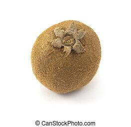 One kiwi fruit with hairy skin, showing six sepals