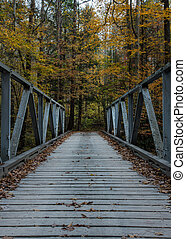 One Lane Bridge in Fall