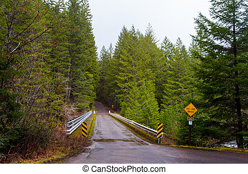 One Lane Bridge in Forest - Forest area with a one lane ...
