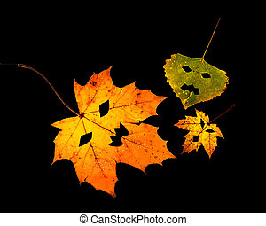 One leaf with Jack-O -Lantern cutout on white background